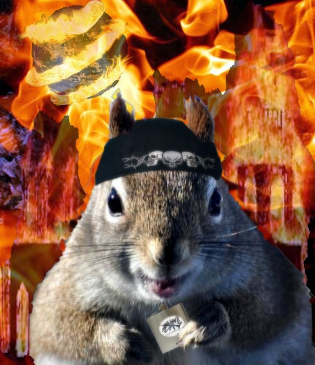 Squirrel Fire